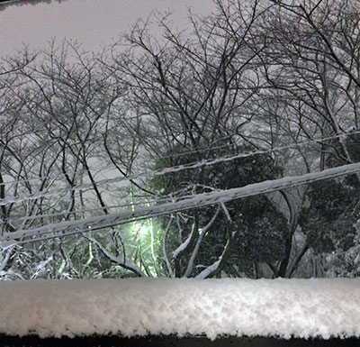 東京4年振りの大雪!